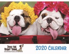 Final-Proofread-2020-Calendar_Page_01-(2).jpg